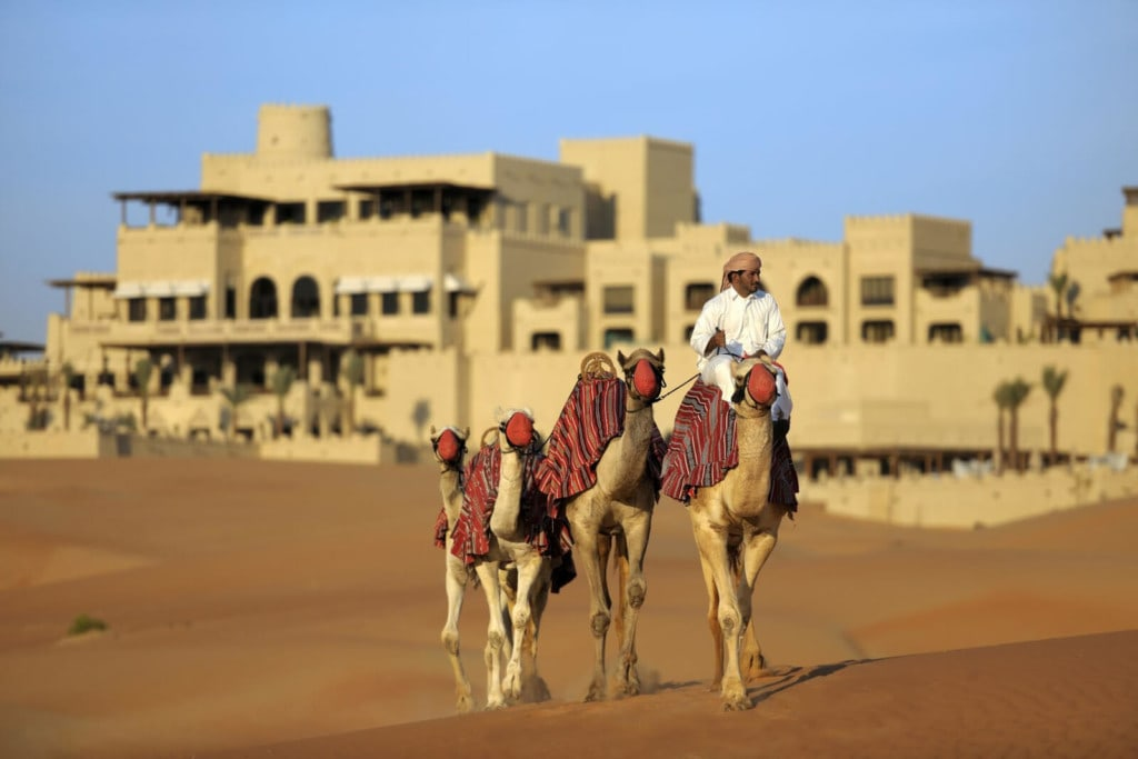 Qasr Al Sarab - kamele