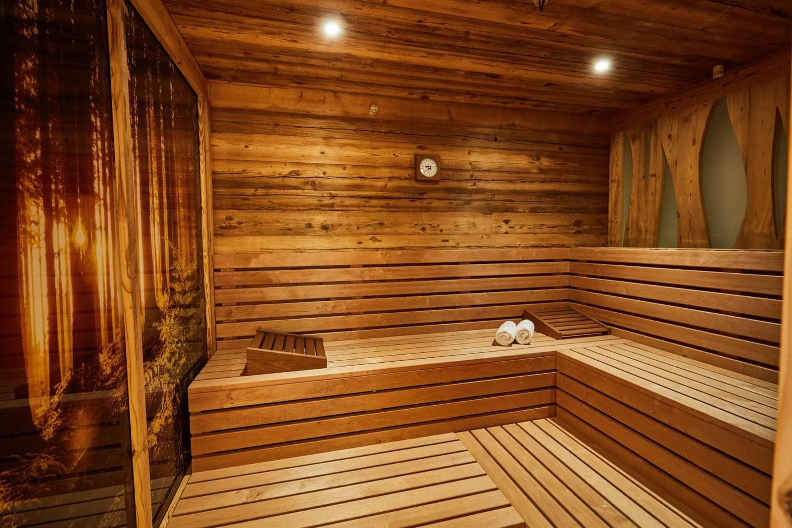 MS Europa 2 - sauna
