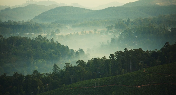 "Sri Lanka  ""Strahlend schönes Land"""